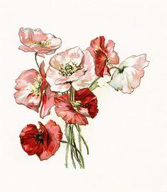Vintage Flower clipart illustration  vintage art antique com/wp