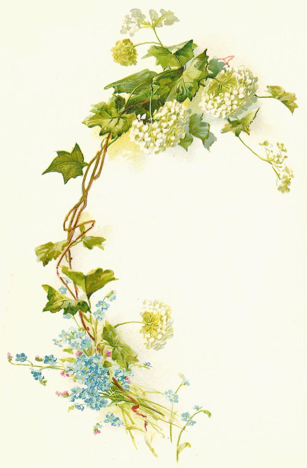 Vintage Flower clipart illustration Free  Flower Vintage Art: