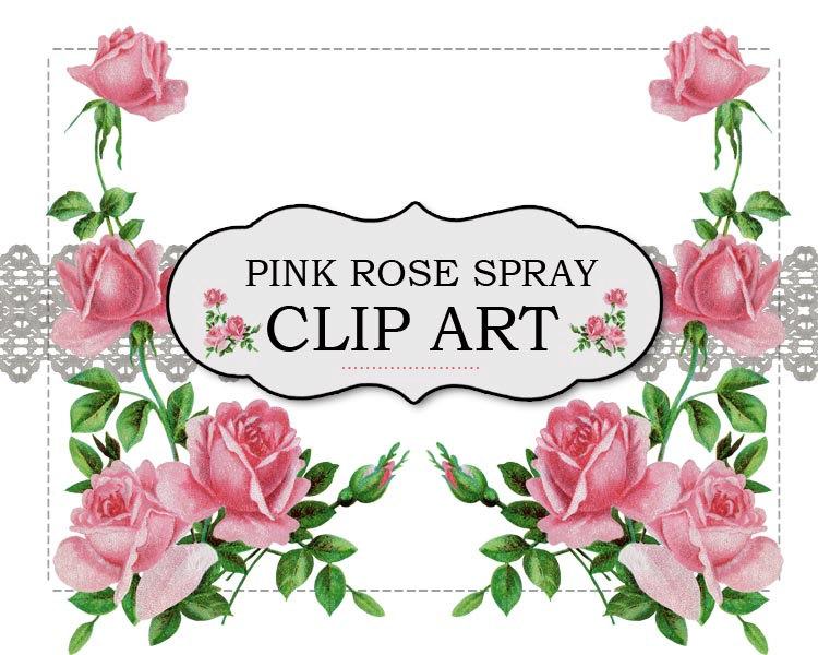 Vintage Flower clipart pink rose Pink #71 Rose Clipart rose