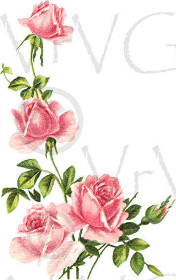 Vintage Flower clipart pink rose By ShaBby  VrVGraphics Download