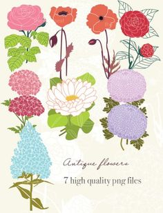 Vintage Flower clipart small flower  Frames FREE Flower Digital