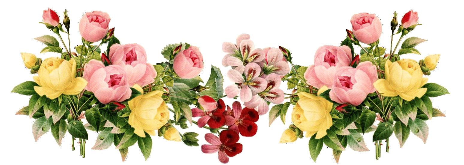 Vintage Flower clipart transparent Png ClipArt  Flowers frame