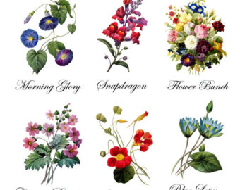 Vintage Flower clipart wildflower bouquet Temporary Tattoo 6 Etsy Bouquets