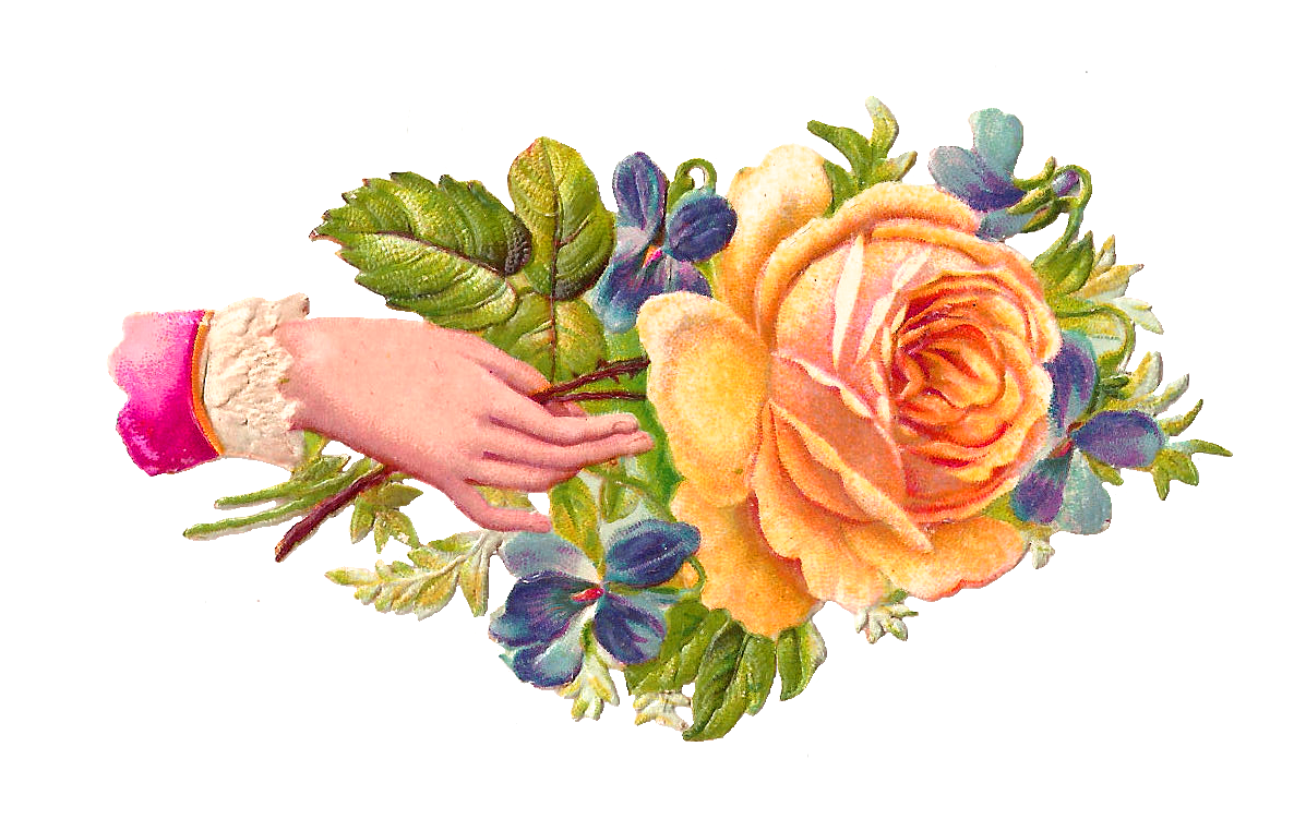 Vintage Flower clipart yellow rose Pictures Free Library Victorian Images:
