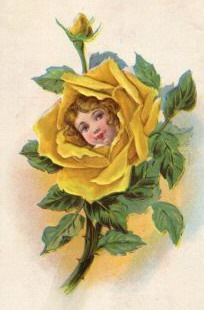 Vintage Flower clipart yellow rose Blog Free Archive vintage from