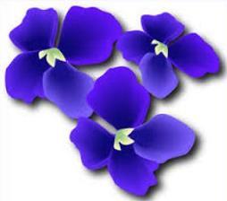Violet clipart Clipart Violet Violets Free