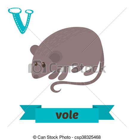 Vole clipart In Vector children animals of