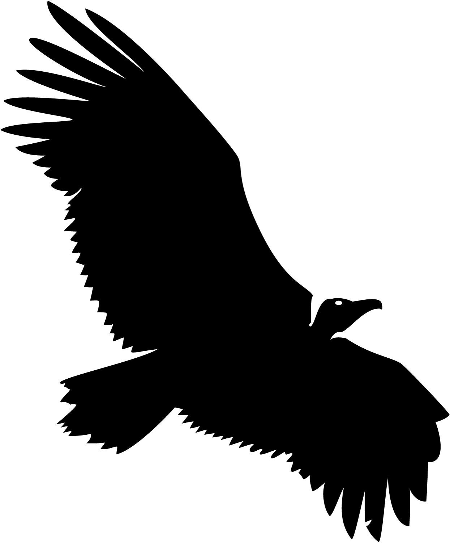 Black Eagle clipart vulture Clipart Clipart Images Free vulture%20clipart