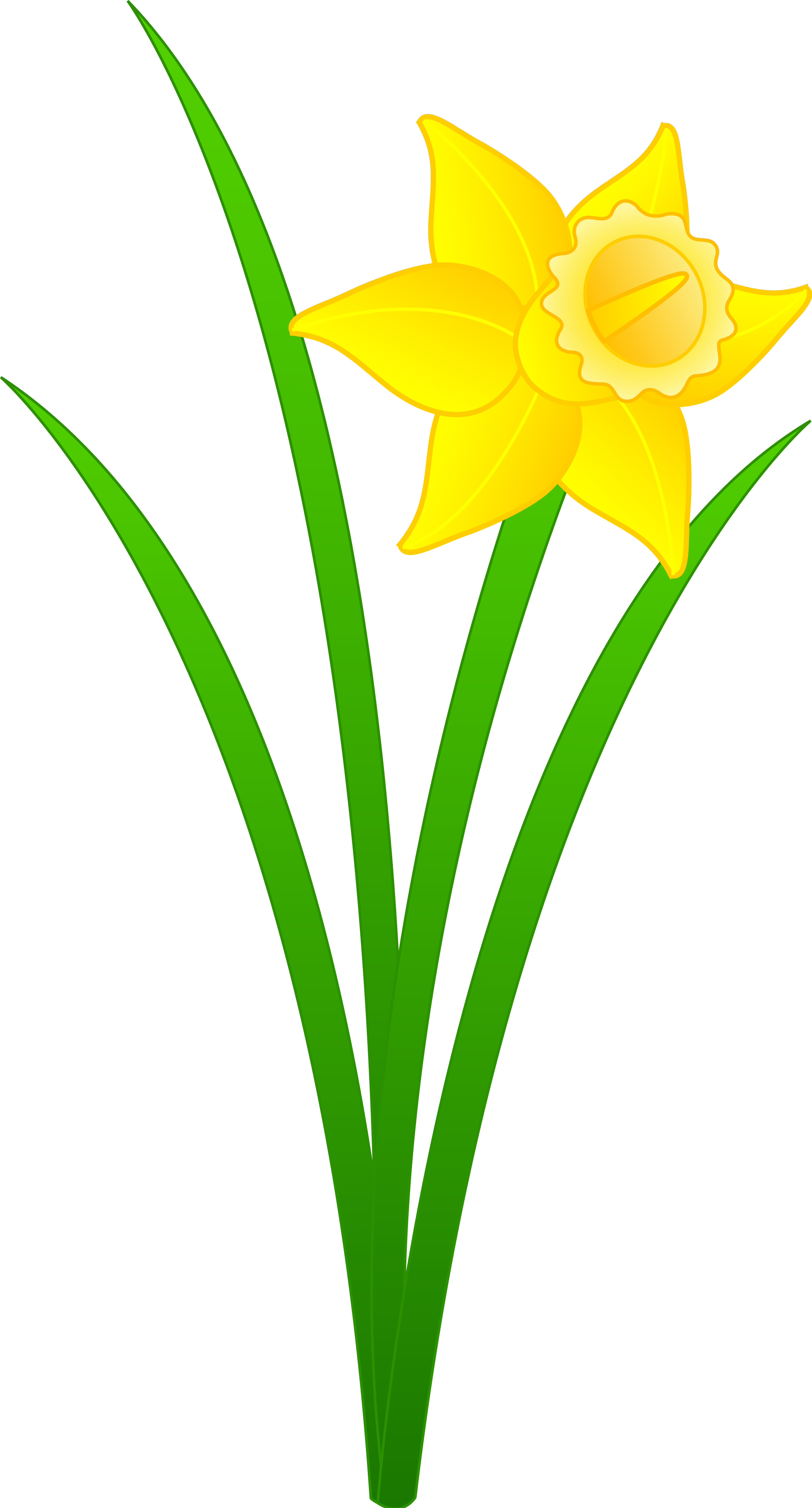 Wales clipart narcissus flower Library Clip Free Art Art