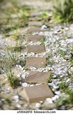 Walkway clipart stone path  pathway Photo Pathway oyster