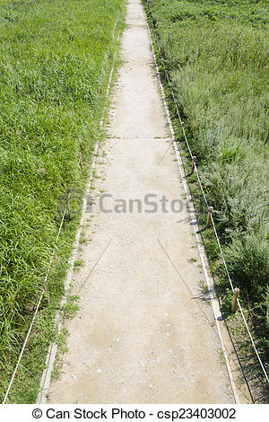 Walkway clipart curved path Grass straight silver grass of