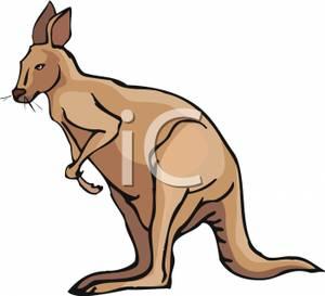 Wallaby clipart Free Wallaby Clip Panda Art