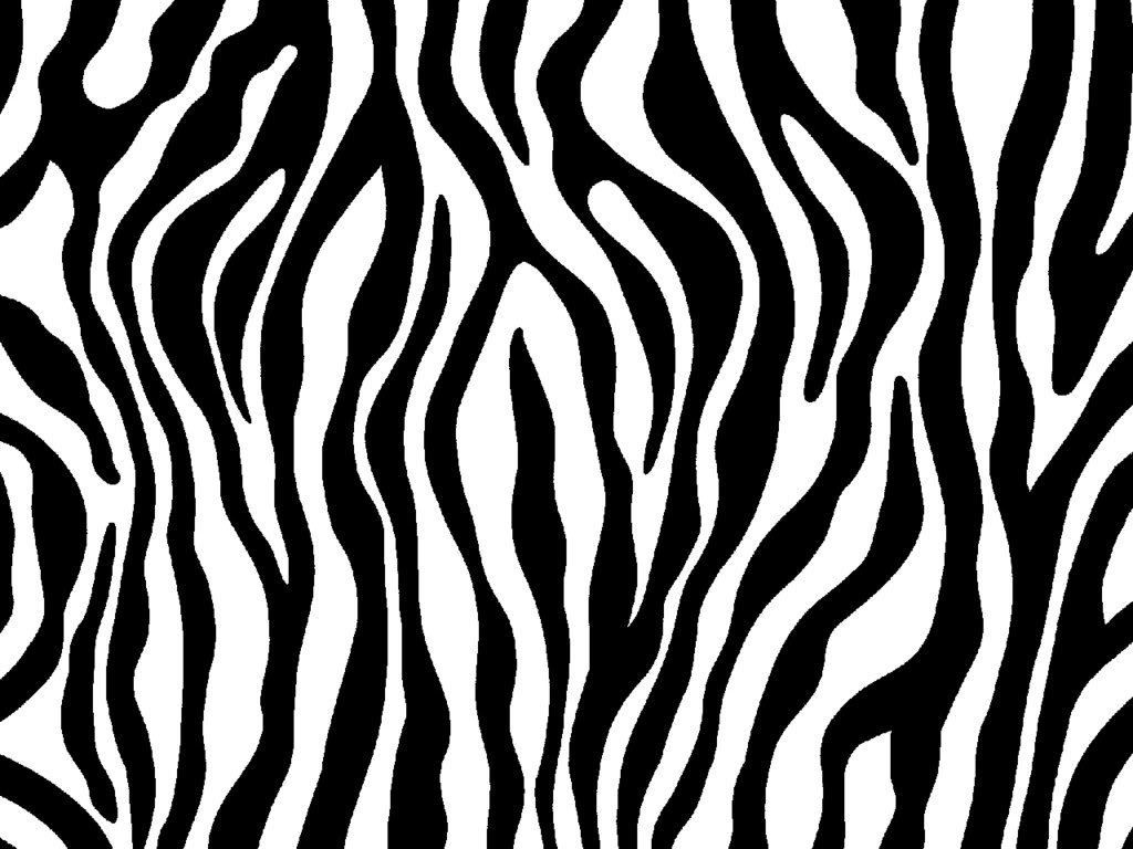 Zebra clipart wallpaper Print photo  jpg Animal
