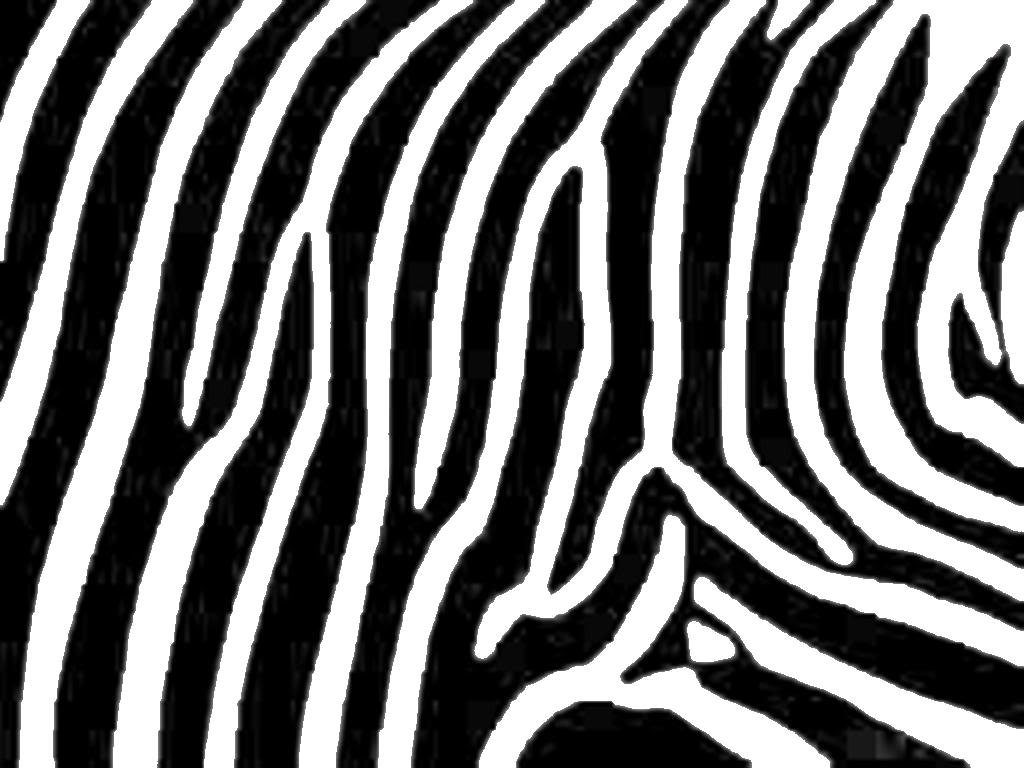 Tiger Print clipart black and white #7