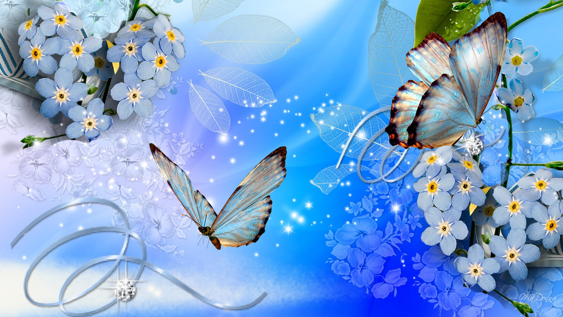 Wallpaper clipart blue flower Wallpapers Blue Search butterfly Google