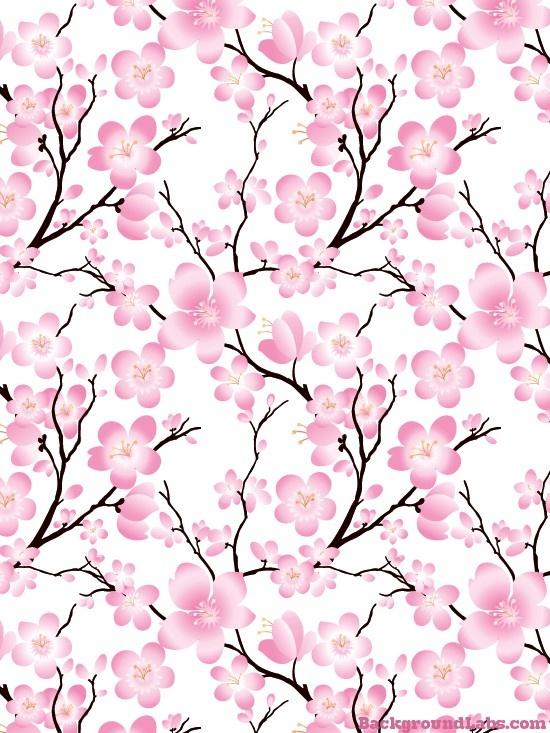 Sakura Blossom clipart tumblr backgrounds #4