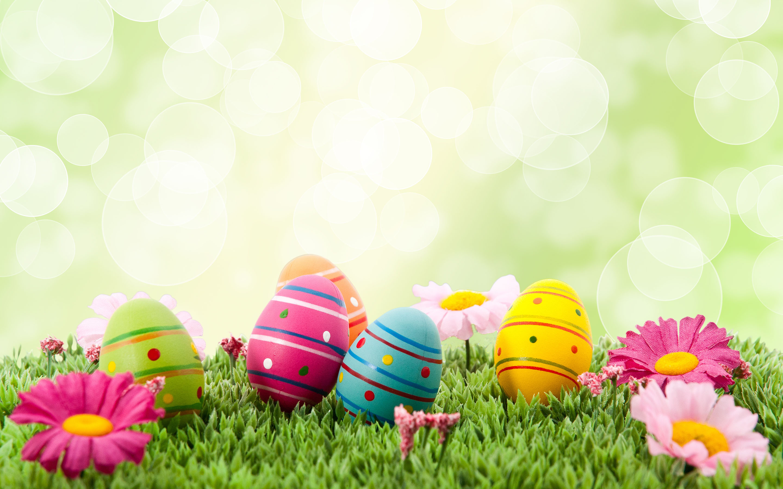 Wallpaper clipart easter Easter  Hunt Bunny Easter