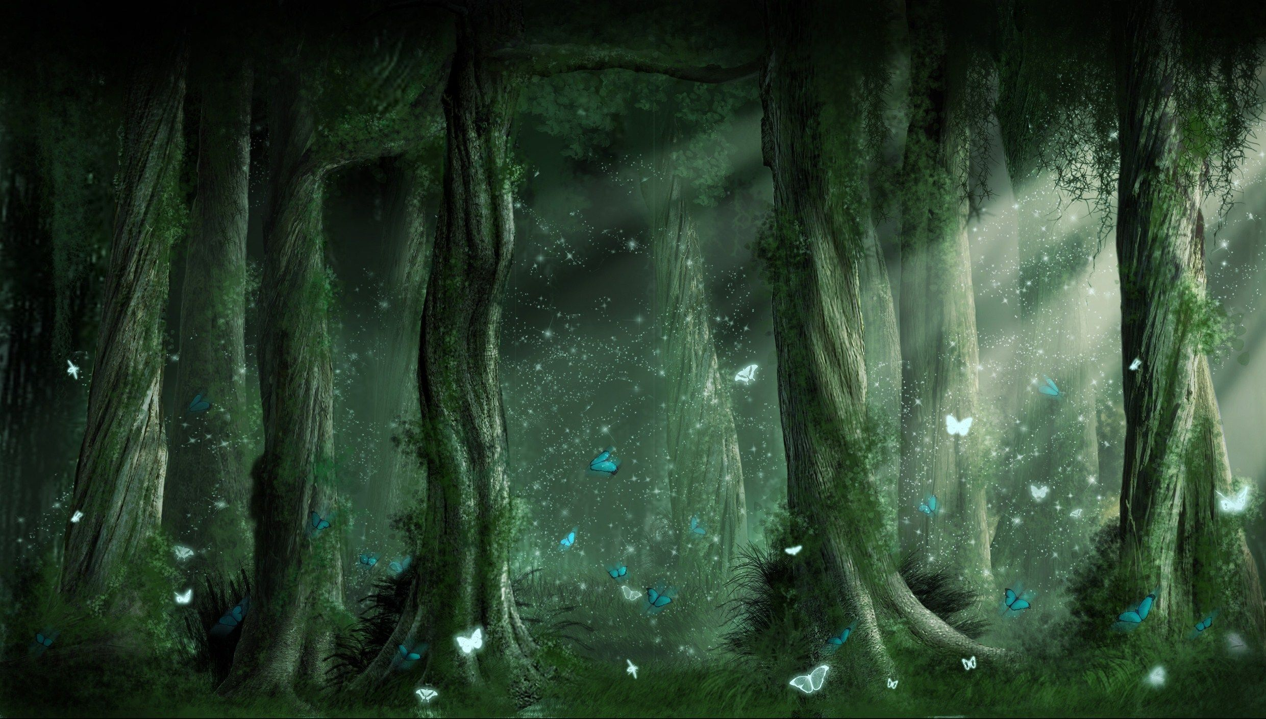Wallpaper clipart forest With backgrounds on category forest