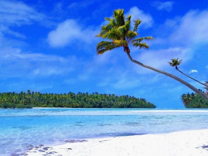 Wallpaper clipart tropical Tropical wallpaper Island Beach Clipart