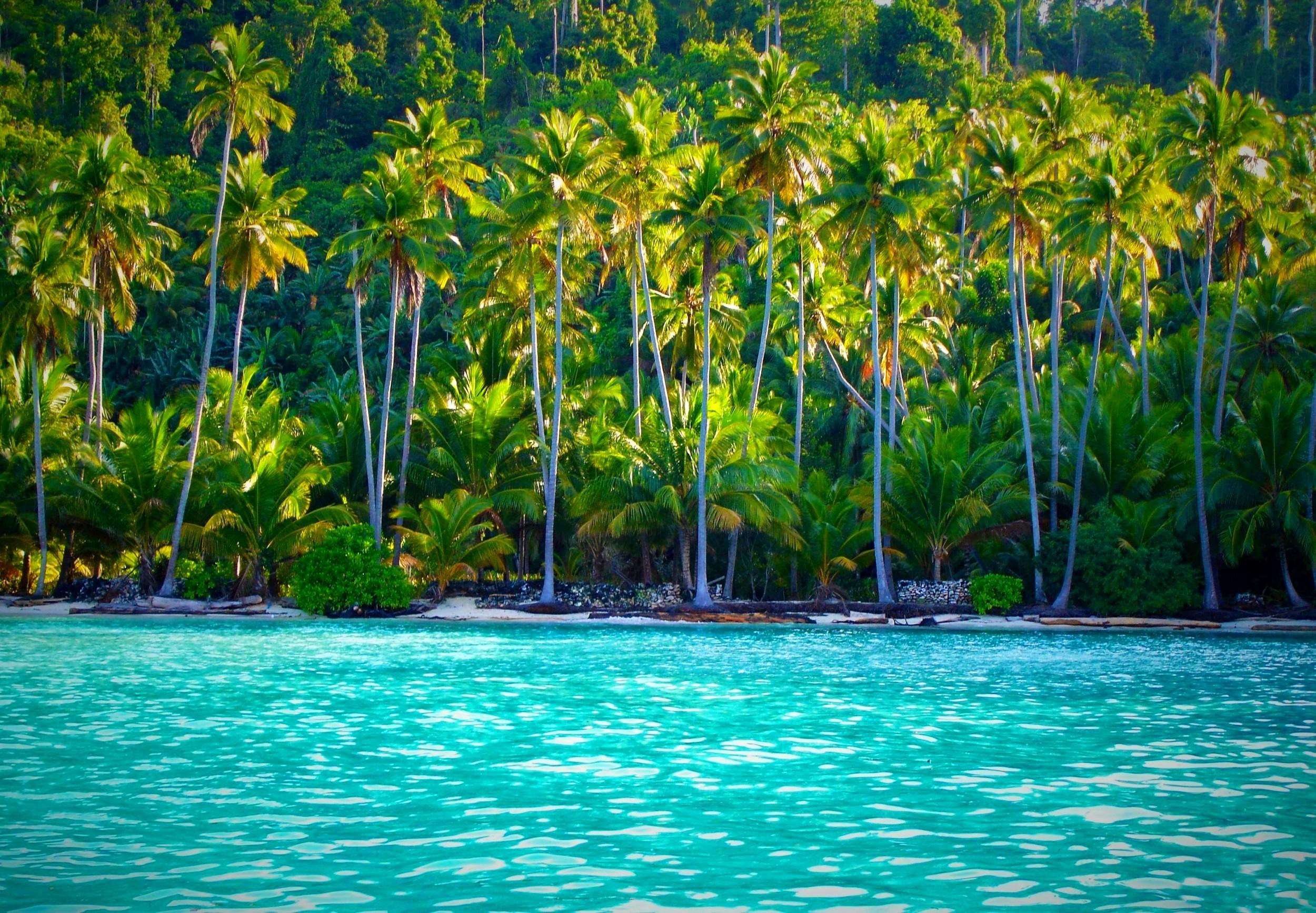 Wallpaper clipart tropical Indonesia Summer Beach Islands Island