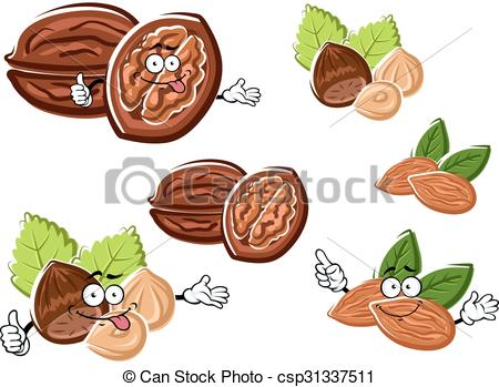 Hazelnut clipart Walnut Clipart Walnut of  Clip with