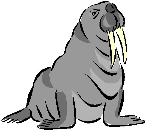 Grey clipart walrus Clipart 2 images WikiClipArt 5