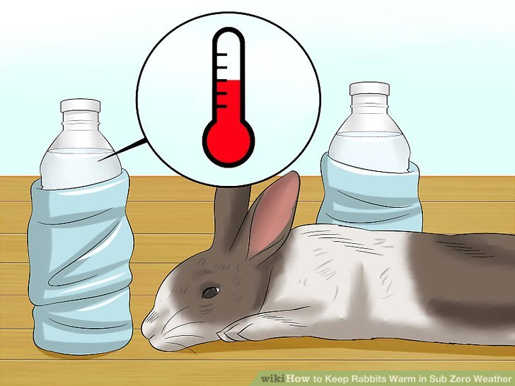 Warmth clipart hypothermia Zero titled Warm How Keep
