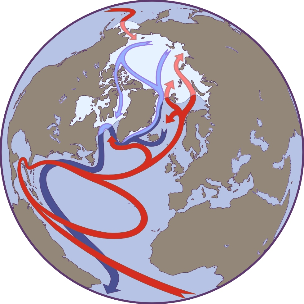 Warmth clipart winter weather And Weather Affecting Factors Arctic