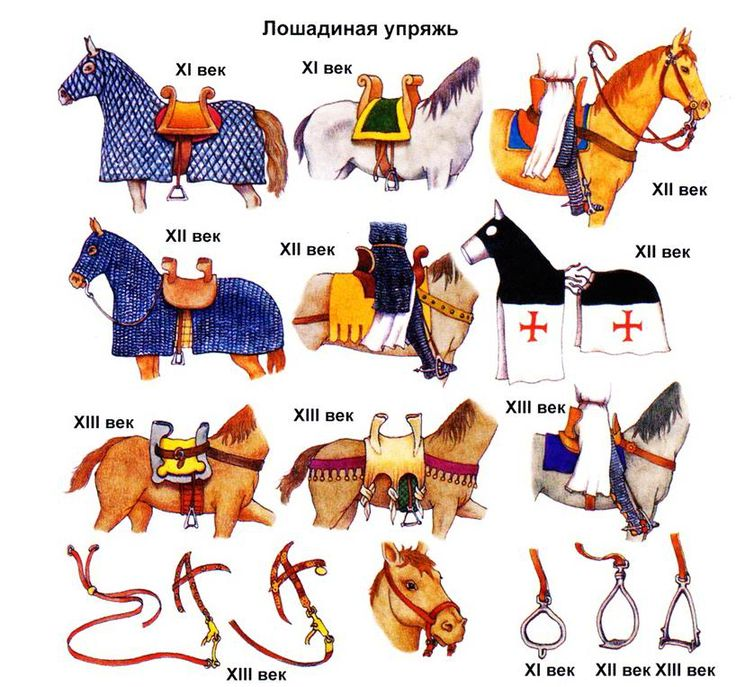 Warrior clipart war horse Warriors and Templar from from