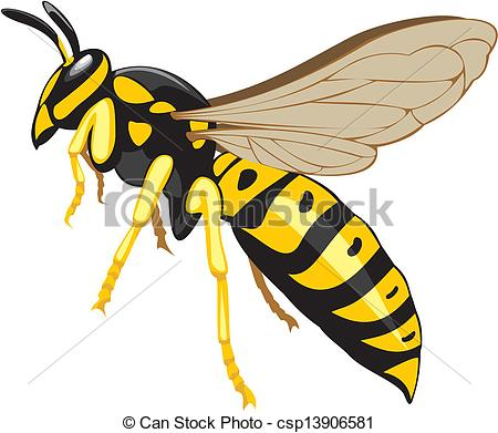 Wasp clipart Vector insect social pest of