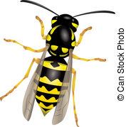 Wasp clipart  Wasp images art 821