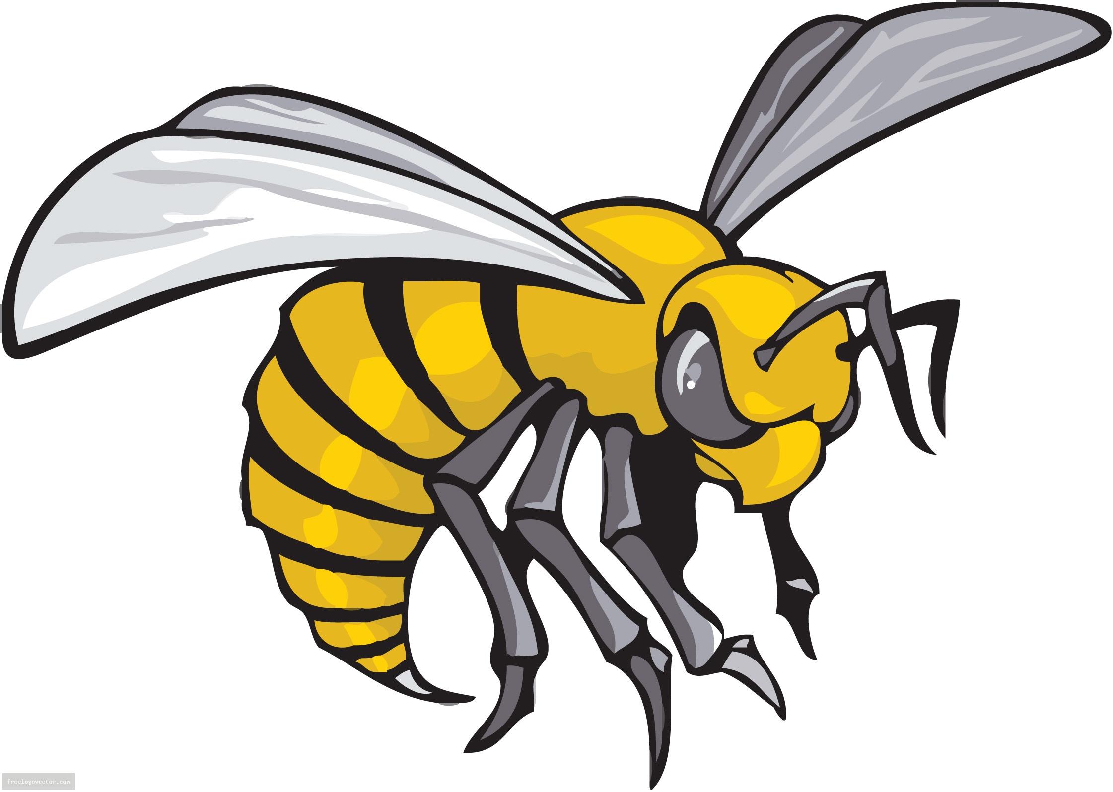 Wasp clipart Art Art WikiClipArt Clip Savoronmorehead