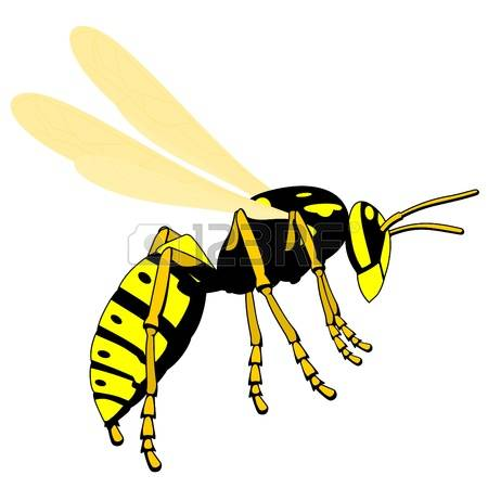Wasp clipart #1 clipart clipart Download Wasp