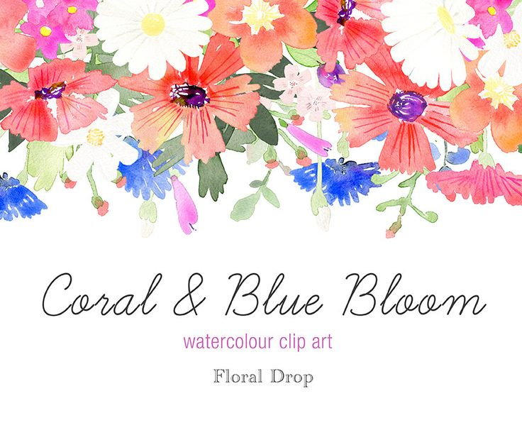 Water Color clipart favourite #5