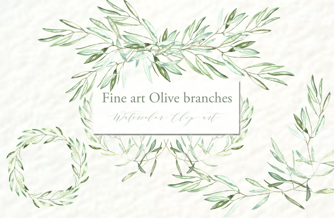 Branch clipart watercolor Clipart  branches TheHungryJPEG Olive