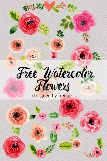 Water Color clipart flowery #15