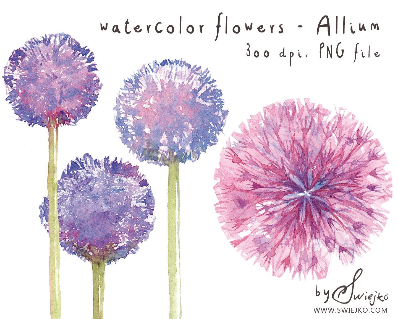 Water Color clipart watercolour Clipart  Watercolor Clipart Flower