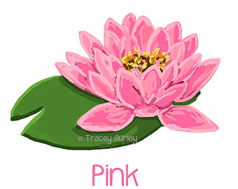 Water Lily clipart Art clipart printable Lily Lilies
