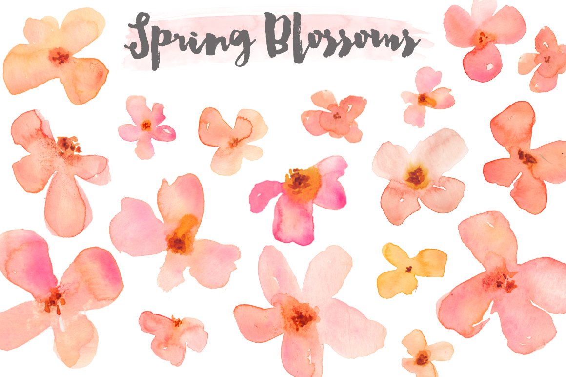 Peach clipart watercolor Art Flower – Watercolor Makes