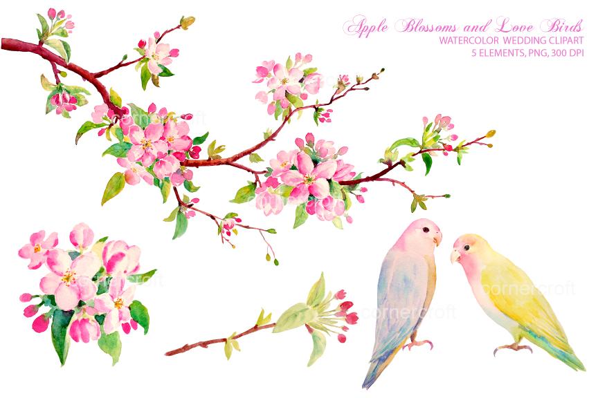 Watercolor clipart Apple Watercolor Apple Birds Birds