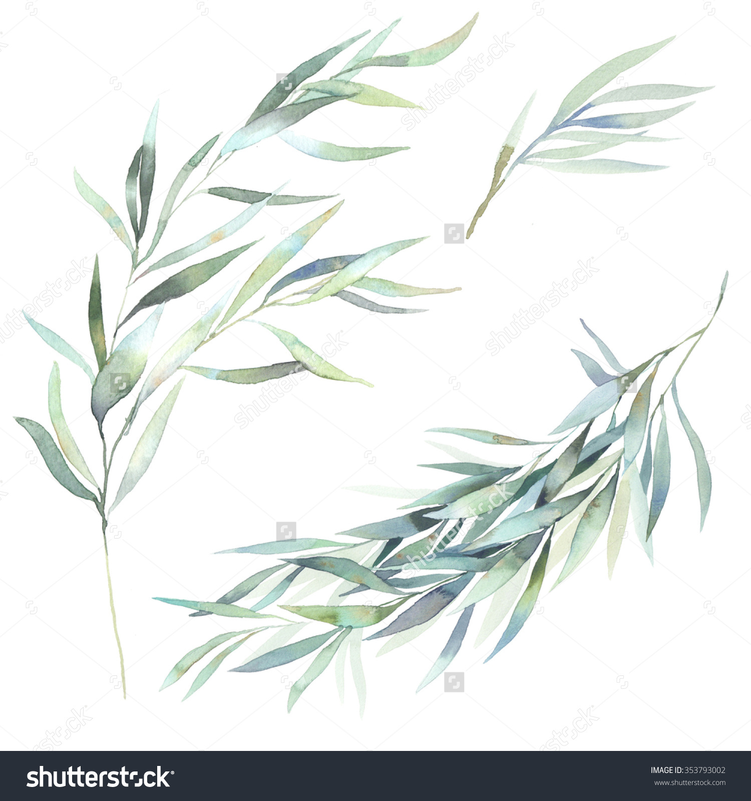 Branch clipart watercolor Leaves Hand Eucalyptus Elements Hand