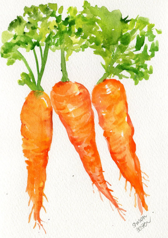Carrot clipart watercolor Carrots original x Series Small