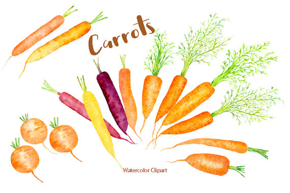Carrot clipart watercolor Watercolor instant carrots rainbow Etsy