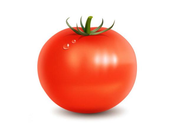 Psd PSD free download Tomato