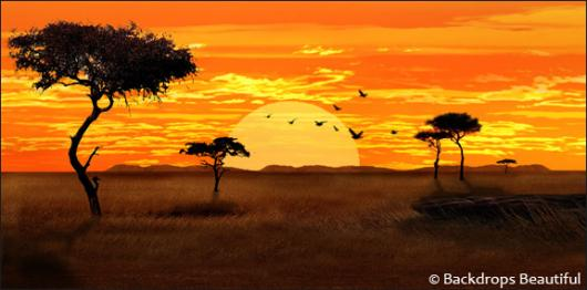 Savannah clipart african savanna #9
