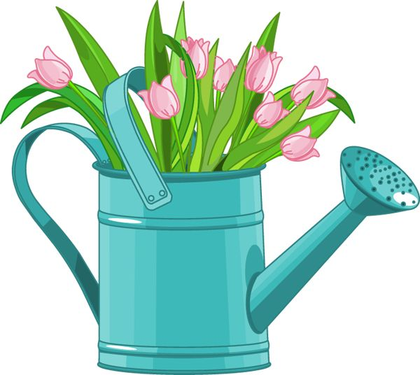 Watering Can clipart cute And 136 Tulips on png
