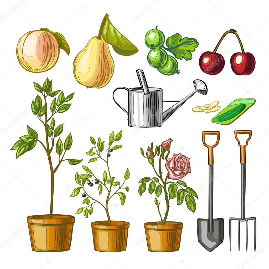 Watering Can clipart garden centre Background Set for plants seeds