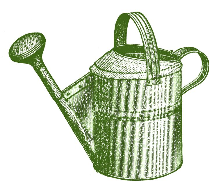 Watering Can clipart large Vintage Garden Art Graphics 254
