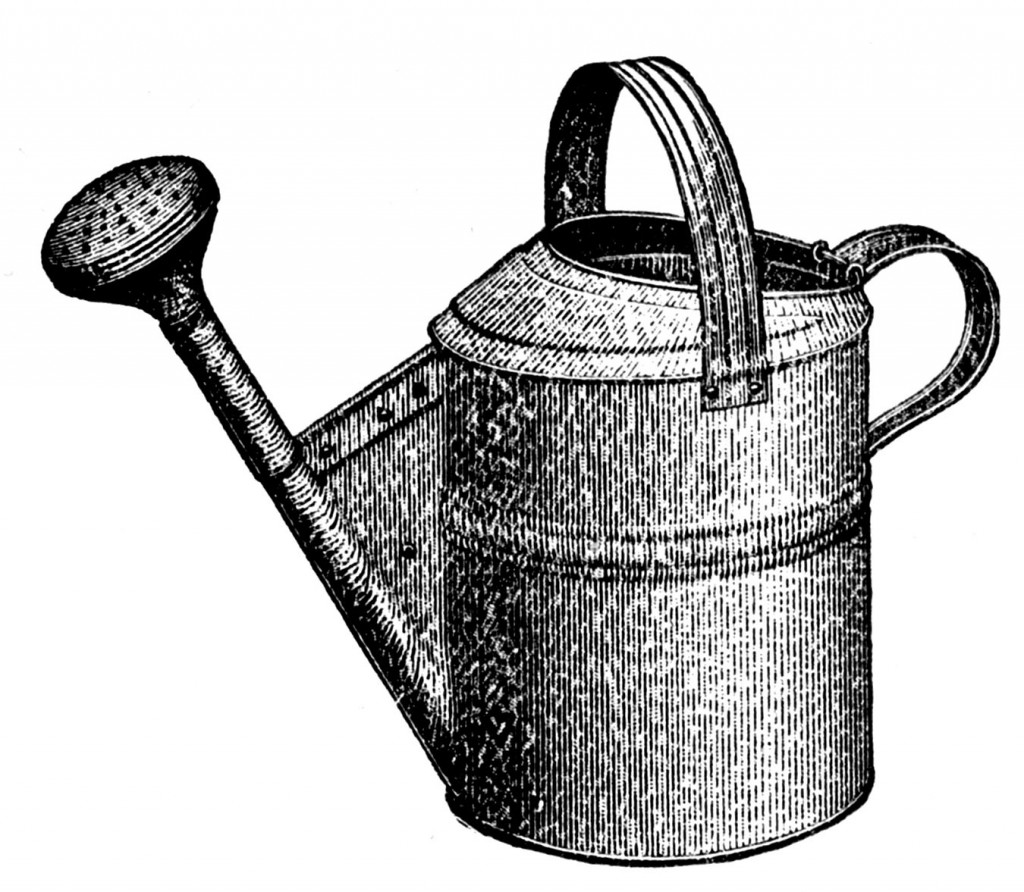 Watering Can clipart plant needs The Images Favorite Images Gardening