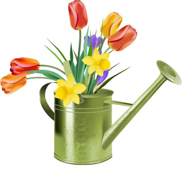 Watering Can clipart spring The March and of and